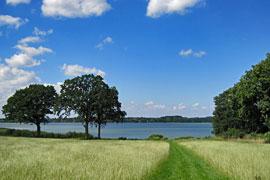 Hemmelsdorfer See - Blick von Warnsdorf