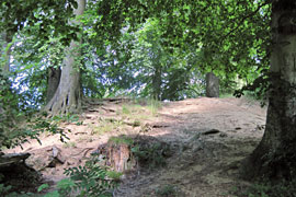 Burg Gosefeld - Räuberhöhle