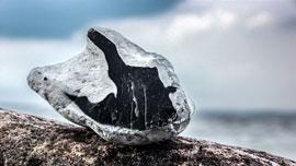 Stein am Brodtener Ufer © Rolf Konkel