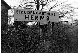 Firmenschild Staudengärtnerei Herms Eutin