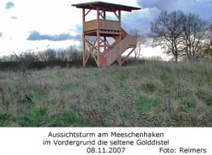 Aussichtsturm am Meeschenhaken am Dummersdorfer Ufer