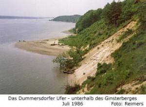 Dummersdorfer Ufer unterhalb des Ginsterberges
