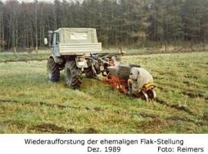 Wiederaufforstung der ehemaligen Flak-Stellung am Dummersdorfer Ufer