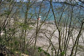 Blick vom Seetempel-Wäldchen in Lübeck-Travemünde auf Strand und Ostsee