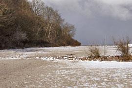 das Seetempel-Wäldchen vom Strand aus gesehen in Lübeck-Travemünde im Winter