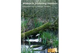 """Ausstellung """"Wildnis in Schleswig-Holstein"""""""